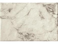 Керамогранит Serenissima Magistra Classic Paonazzetto 60,8 40x60,8 см