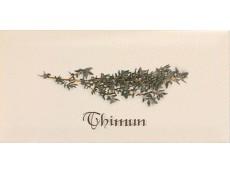 Декор Ape Biselado Decor Crema Thimun 10x20 см