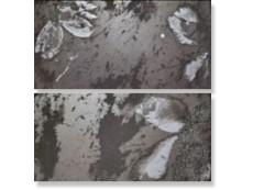 Декор Ceramiche Brennero Goldeneye Euphoria Dec. Dark Black  25,1x50,5 см